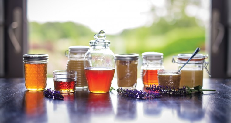 P. Allen Smith: A Honey of a Hobby