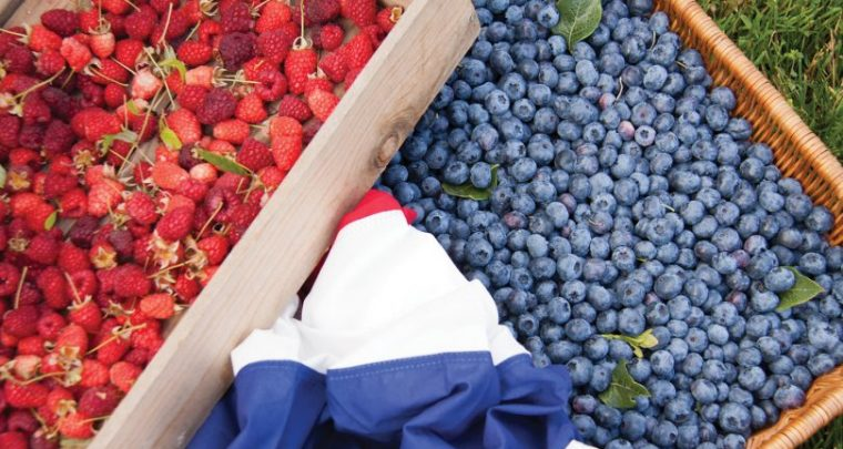 P. Allen Smith: Berry Good Fun... Summertime Edibles!