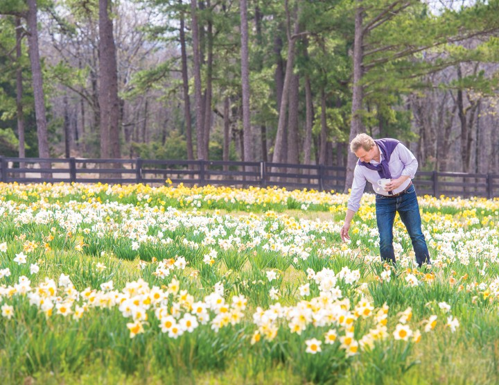 P. Allen Smith: Spring is in The Air... Tips for Decorating with Spring Blooms