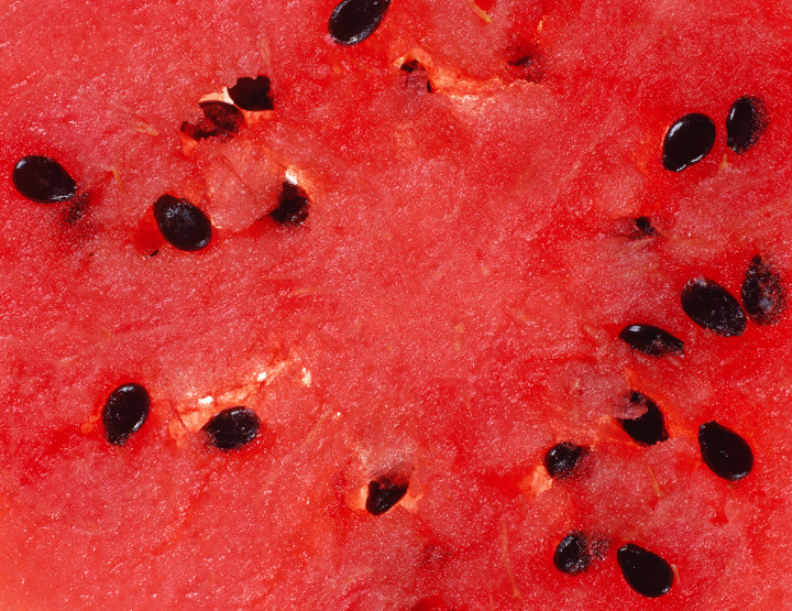 Travel Arkansas: Tomatoes, Watermelon and Barbecue … Oh My!