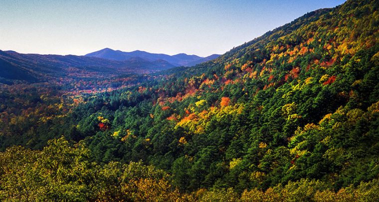 Fall hiking in the Ouachitas offers colorful scenery
