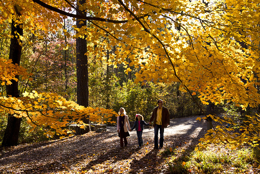 arkansas fall foliage updates   ay mag ay 864 x 577 · jpeg