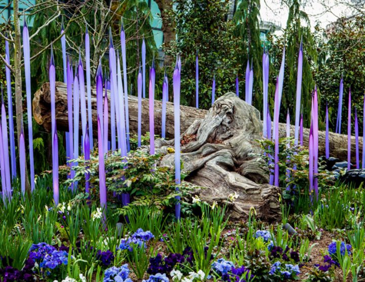 See Chihuly: In the Forest Until Nov. 27