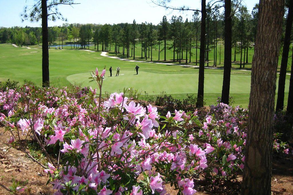 DeSoto Golf Course in Hot Springs Village