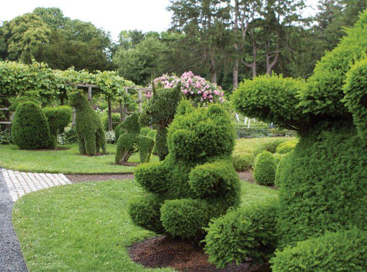 Sharing My Favorite Southern Gardens