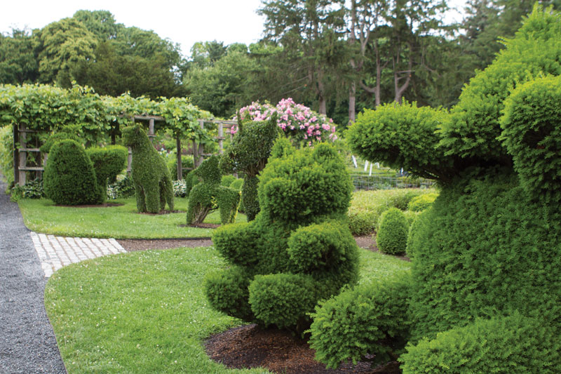 Topiaries like the elephant and bear shown here delight Smith, who enjoys the joy they bring to adults and children alike.