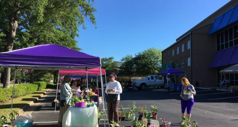 7 Farmers Markets to Visit Now in Central Arkansas