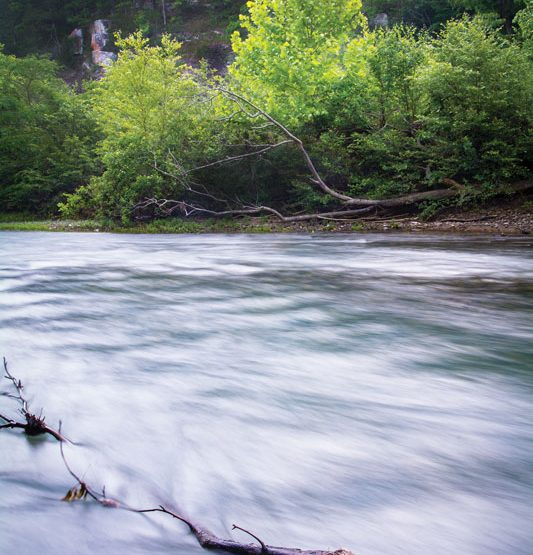 The Nature Conservancy Leads the Fight for Arkansas' Wild Spaces