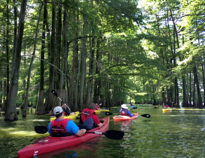 Head Outdoors this August to the Arkansas Delta