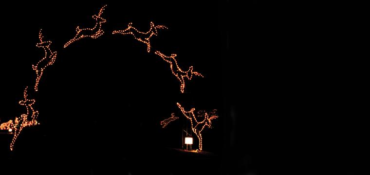 Arkansas Trail of Lights