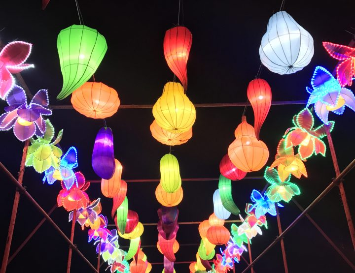 Works of Art at the Arkansas Chinese Lantern Festival