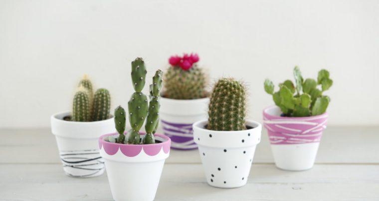 DIY Decorated Terra Cotta Pots from P. Allen Smith
