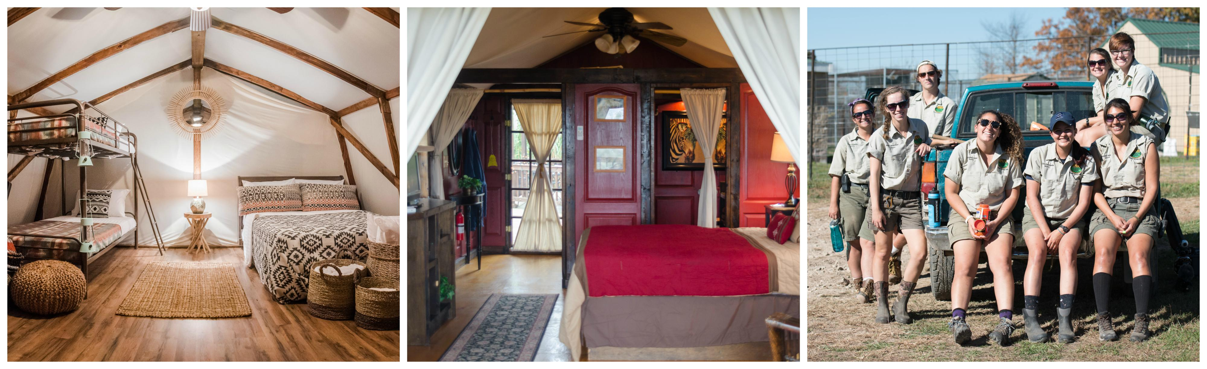 For those looking for a taste of Africa in the Ozarks, Turpentine Creek offers safari tents that sleep up to four.