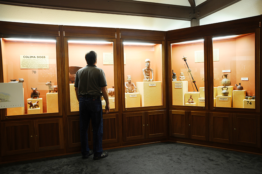 man looking at artifacts in glass case