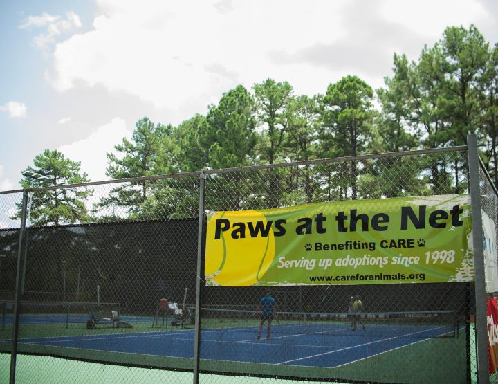 Paws at the Net to Benefit CARE