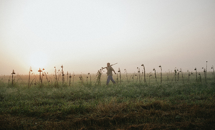 Fall Traditions: Dove Hunting in Arkansas