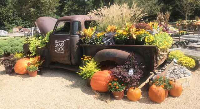 Get into the Fall Spirit at Good Earth Garden Center